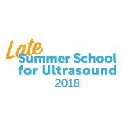 "Die V. ""Late Summer School"" für Ultraschall 2018"