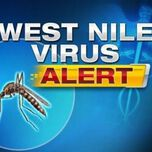 West Nile virus infection in a Bulgarian man: a case report
