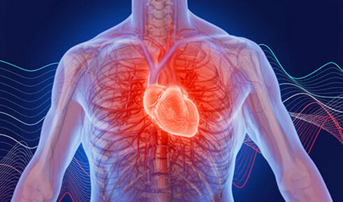 Modern heart valve diagnostics and therapy (VIDEO)