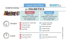 Diabetics Meal Plan - North India