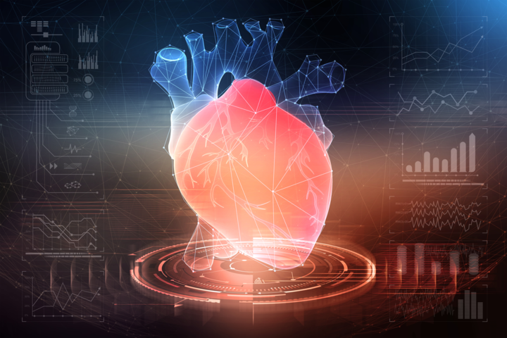 How long can COVID-19 impact the heart?