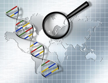 Gene-editing may bring cure for muscular dystrophy