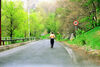 6 months of walking may reverse cognitive decline
